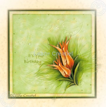 Image de Embossing folder Frame Leaves