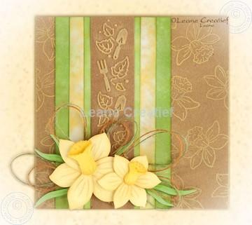 Bild von Multi die Daffodil