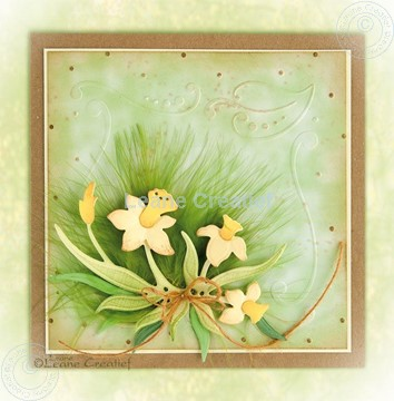 Bild von Daffocil with embossed frame
