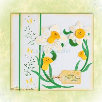 Bild von Daffodil