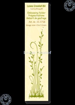 Image de Border grass long