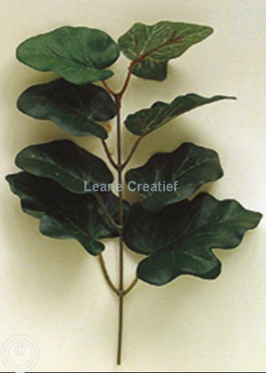 """Afbeelding van LeCreaDesign® Bladgroen pakket Tak """"ivy"""""""