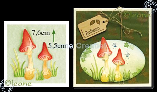 Image sur Mushrooms