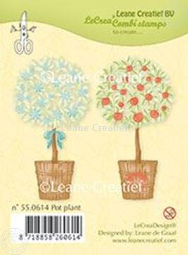 Image de Pot plant