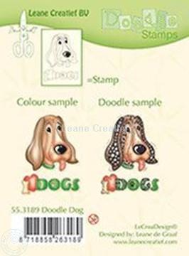 Bild von Doodle Dog