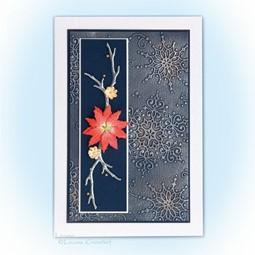 Image de la catégorie Poinsettia & Étoiles